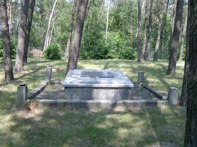 Могила где похоронен Федосеев Г.К.